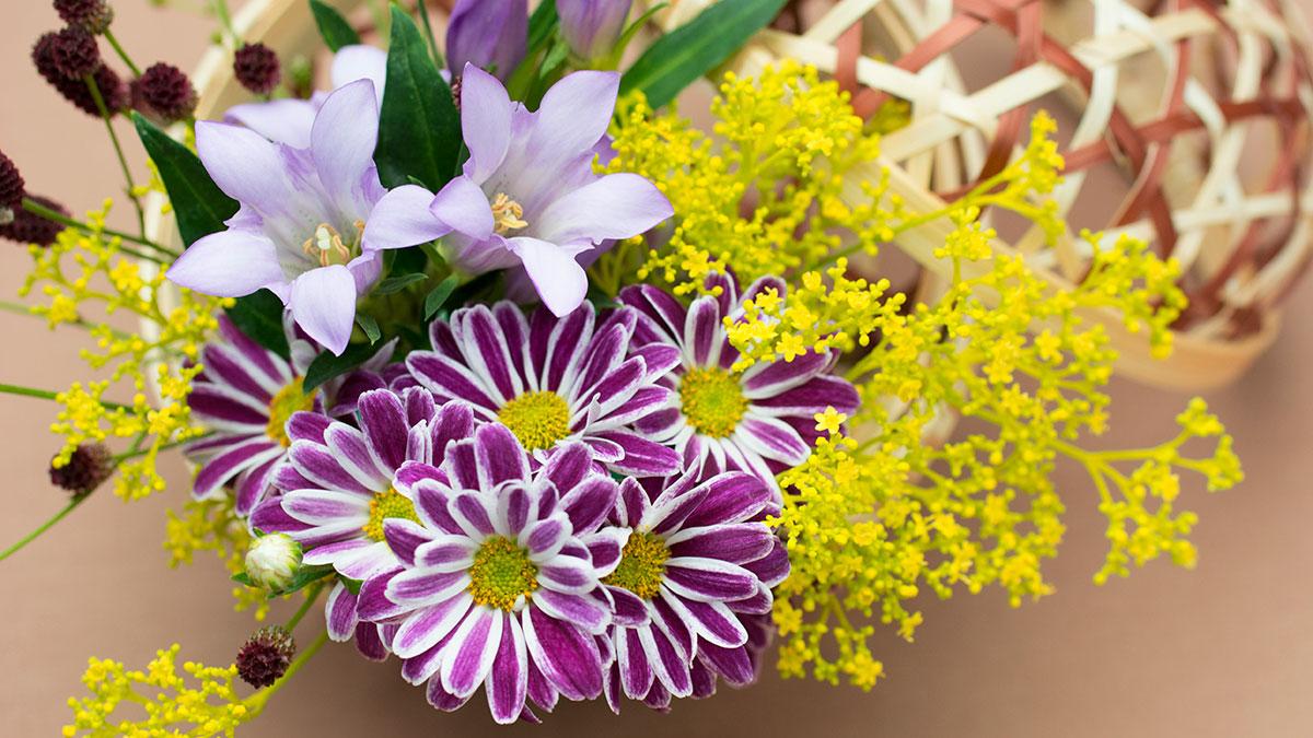 華道体験の花の写真