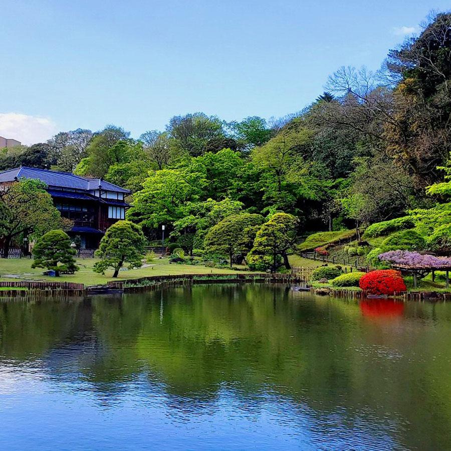 日本庭園巡り